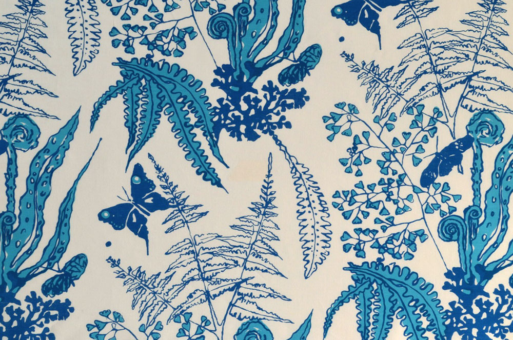 blue-Ferns-on-white
