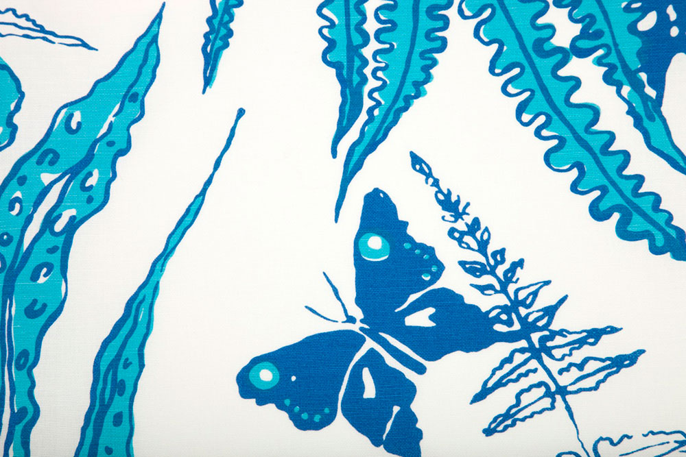blue-ferns-detail-on-White-