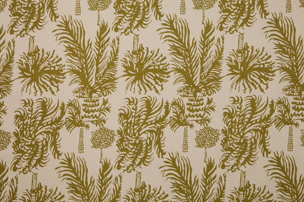 Palms-2-Olive-